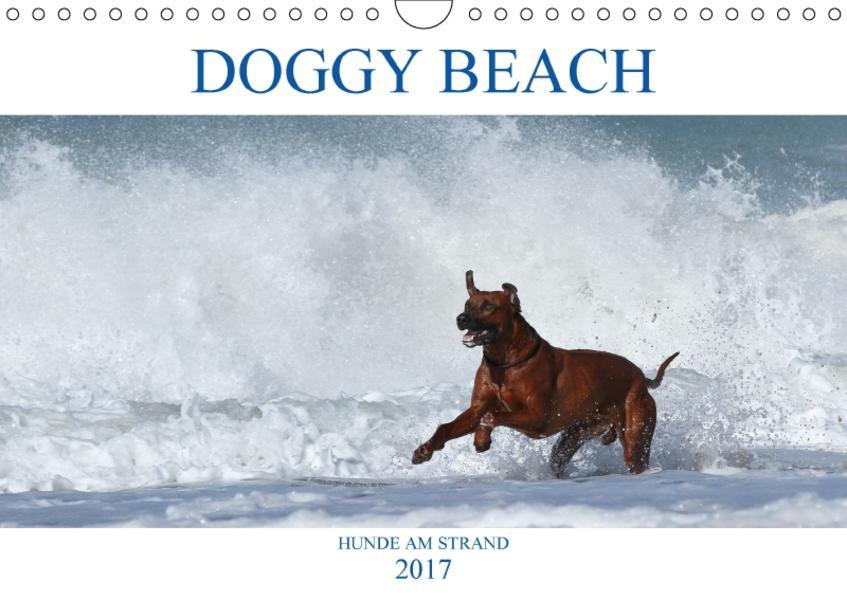 DOGGY BEACH - Hunde am Strand (Wandkalender 2017 DIN A4 quer) - Coverbild