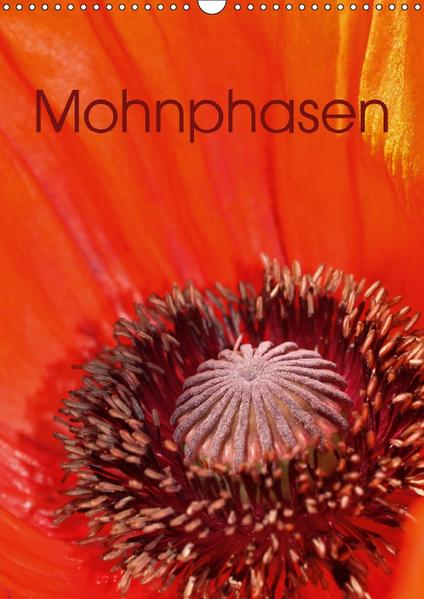 Mohnphasen (Wandkalender 2017 DIN A3 hoch) - Coverbild