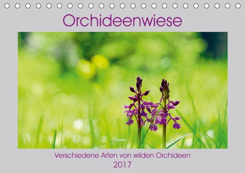 Orchideenwiese  2017 (Tischkalender 2017 DIN A5 quer) - Coverbild
