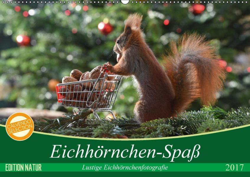 Eichhörnchen-Spaß (Wandkalender 2017 DIN A2 quer) - Coverbild