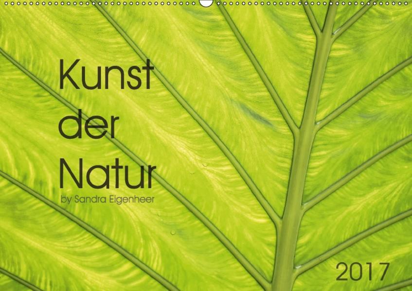 Kunst der Natur (Wandkalender 2017 DIN A2 quer) - Coverbild