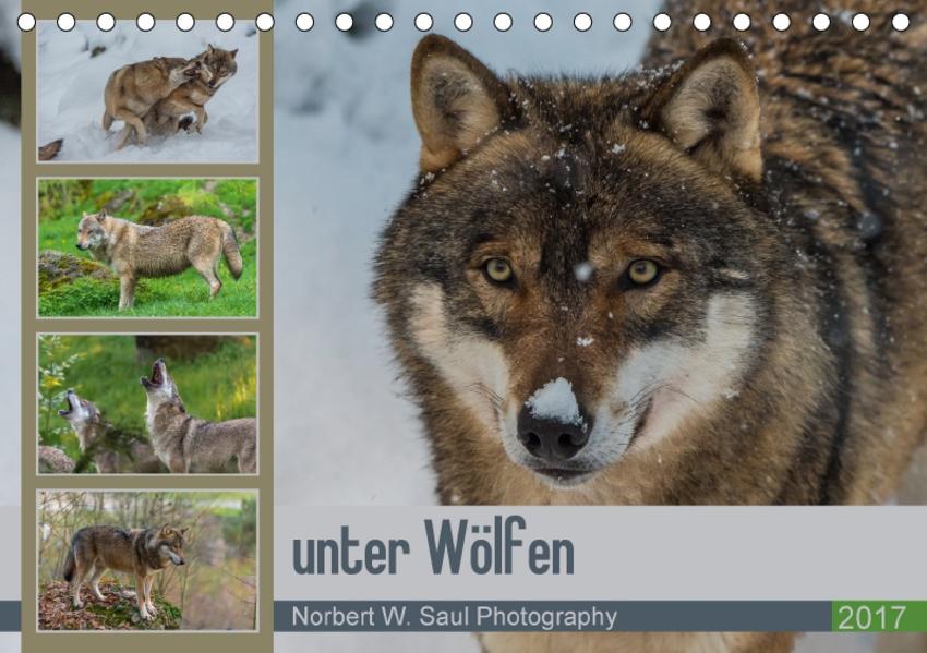 unter WölfenCH-Version  (Tischkalender 2017 DIN A5 quer) - Coverbild