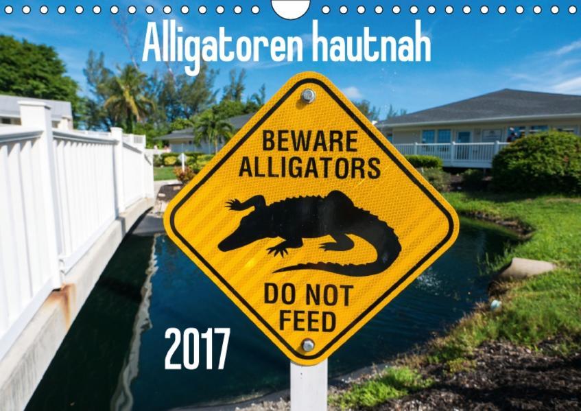 Alligatoren hautnah (Wandkalender 2017 DIN A4 quer) - Coverbild
