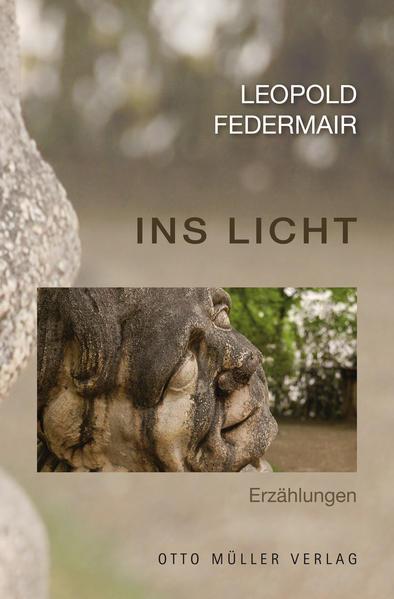 Ins Licht - Coverbild