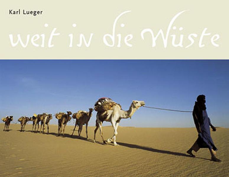 Weit in die Wüste - Coverbild