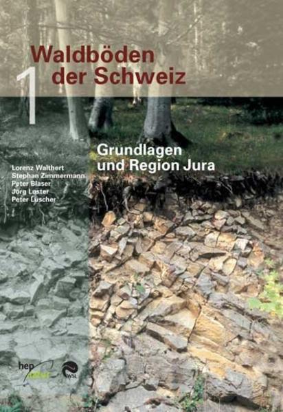 Waldböden der Schweiz - Coverbild
