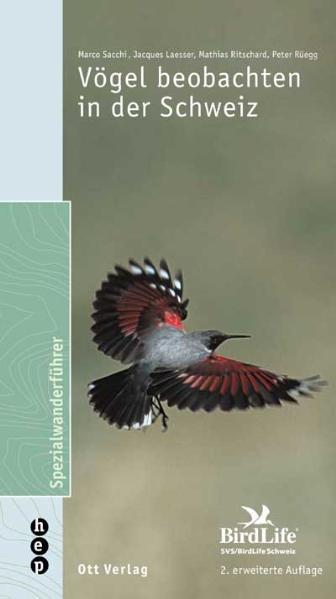 Vögel beobachten in der Schweiz - Coverbild
