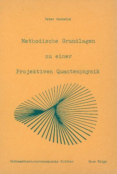 Methodische Grundlagen zu einer projektiven Quantenphysik - Coverbild