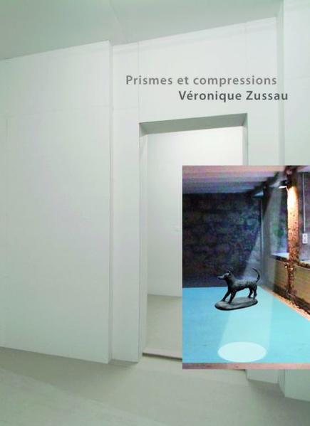 Prismes et compressions - Coverbild