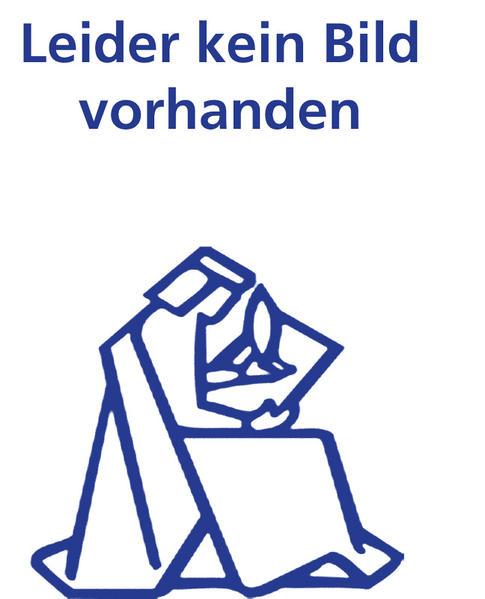 Die Geldstrafe im Schweizerischen Strafrecht - Coverbild