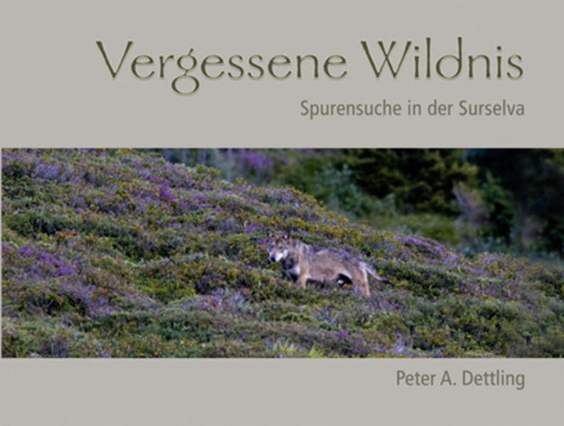 Vergessene Wildnis - Coverbild
