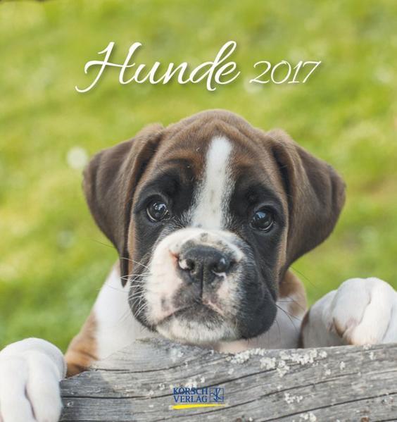 Hunde 2017 - Coverbild