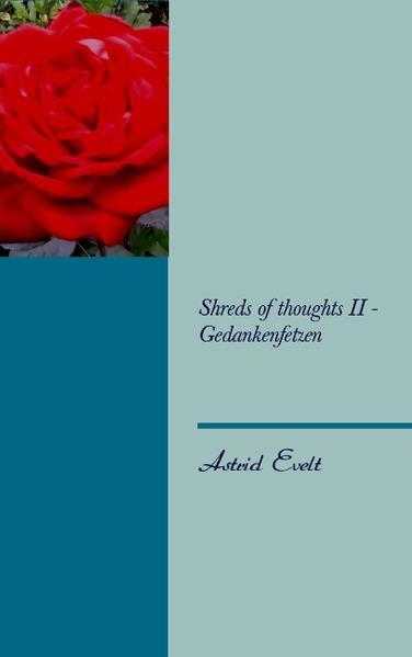 Shreds of thoughts II - Gedankenfetzen - Coverbild