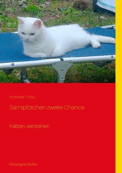 Samtpfötchen zweite Chance - Coverbild