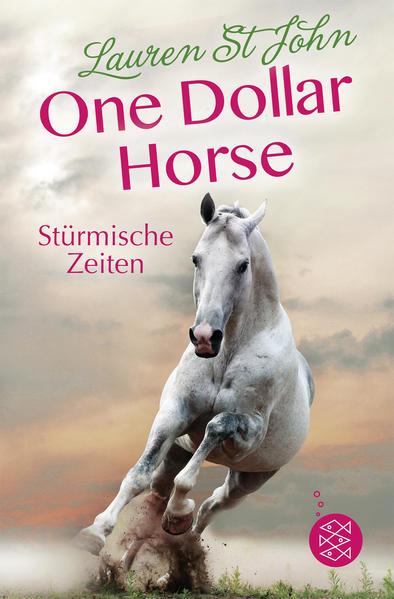 One Dollar Horse – Stürmische Zeiten - Coverbild