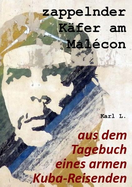 zappelnder Käfer am Malécon - Coverbild
