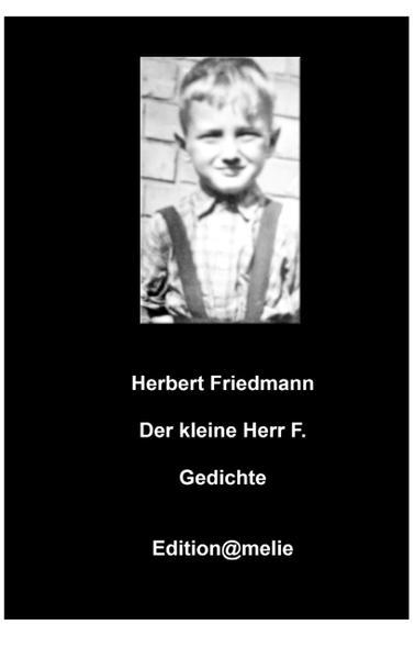 Der kleine Herr F. - Coverbild