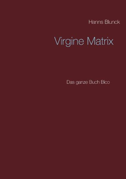 Virgine Matrix - Coverbild