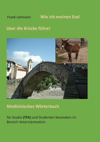 Wie ich meinen Esel über die Brücke führe - Coverbild