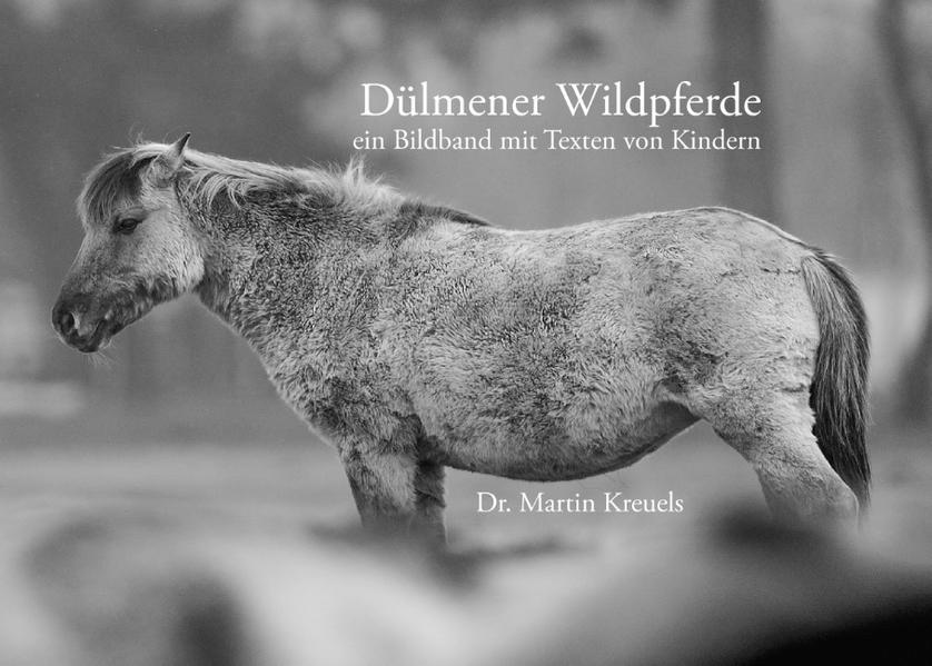 Dülmener Wildpferde - Coverbild