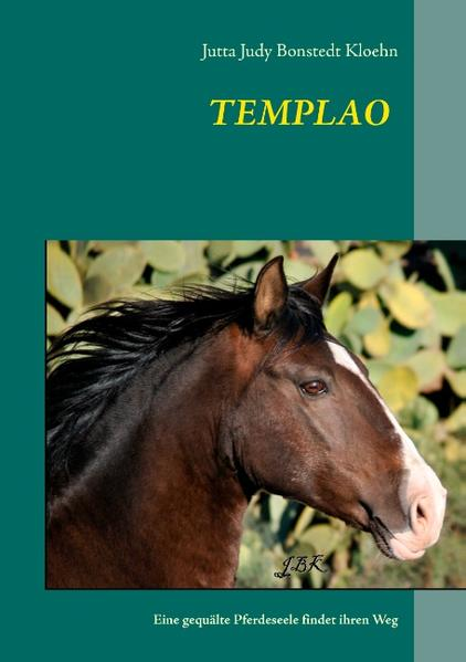 TEMPLAO - Coverbild