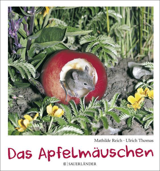 Das Apfelmäuschen (Mini-Ausgabe) - Coverbild