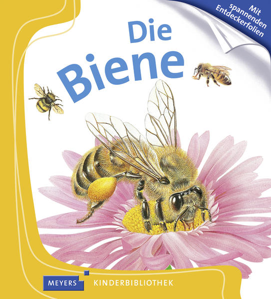 Die Biene - Coverbild