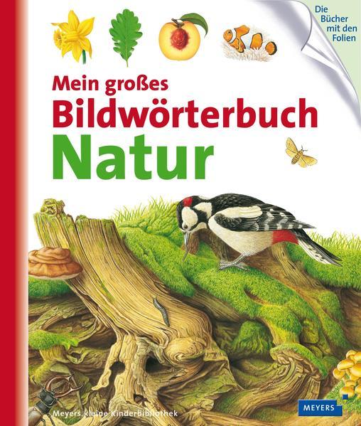 Kostenloses PDF-Buch Mein großes Bildwörterbuch Natur