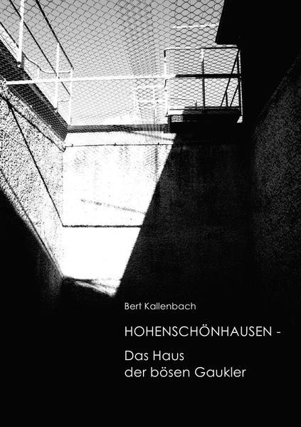 HOHENSCHÖNHAUSEN - Das Haus der bösen Gaukler Epub Kostenloser Download