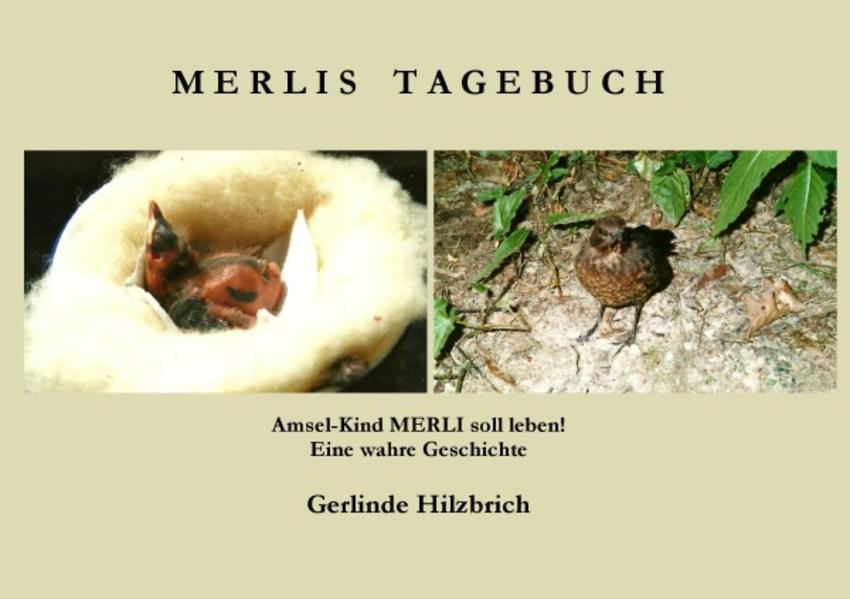 Merlis Tagebuch - Coverbild