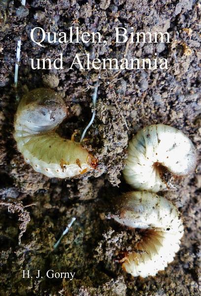 Quallen, Bimm und Alemannia - Coverbild