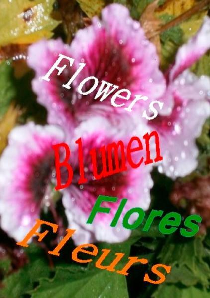 Flowers  Blumen  Fleurs  Flores - Coverbild