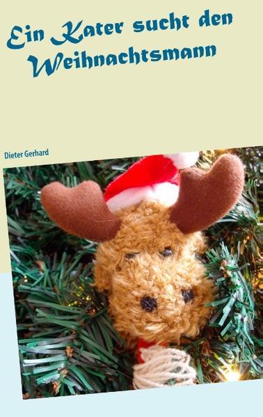 ein Kater sucht den Weihnachtsmann - Coverbild