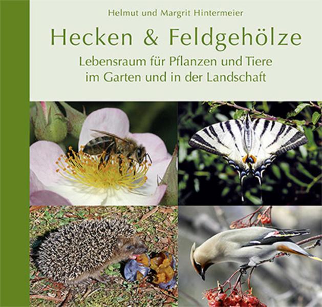 Hecken & Feldgehölze - Coverbild