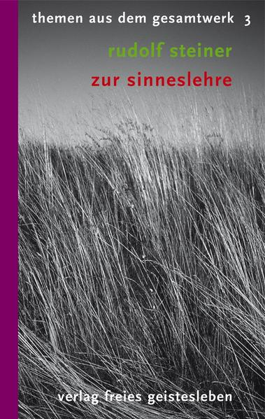 Zur Sinneslehre - Coverbild