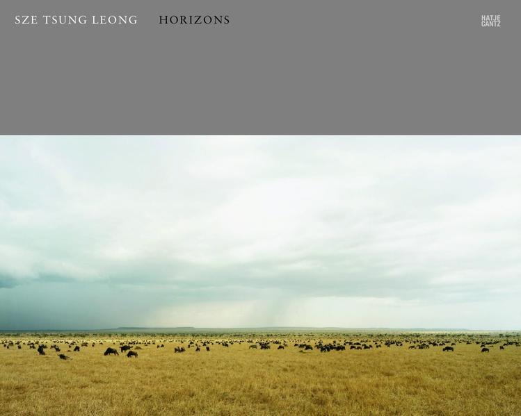 Sze Tsung Leong - Coverbild