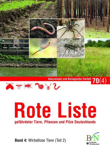 NaBiV Heft 70/4: Rote Liste gefährdeter Tiere, Pflanzen und Pilze Deutschlands - Band 4: Wirbellose Tiere (Teil 2) - Coverbild