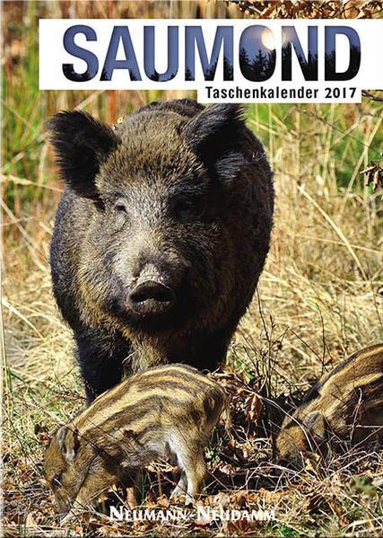 Saumond Taschenkalender 2017 - Coverbild