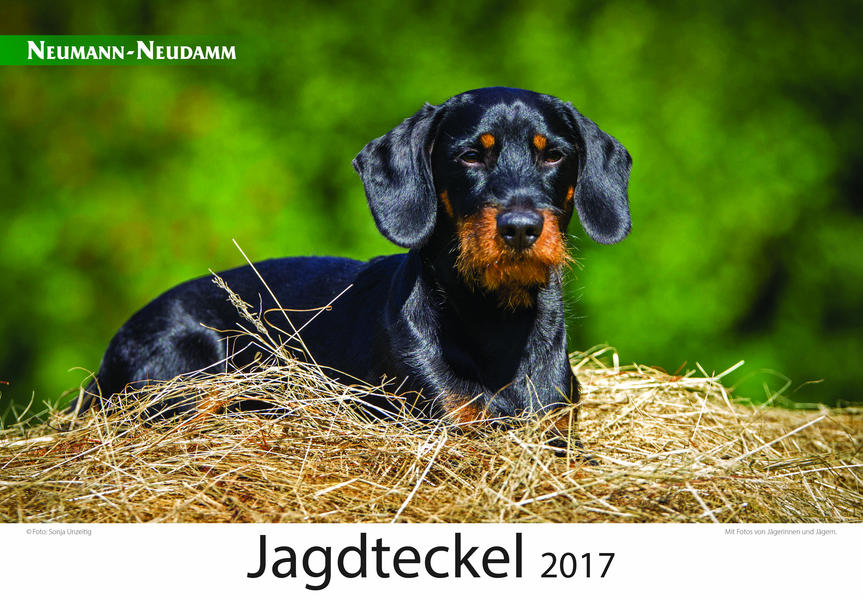 Jagdteckel 2017 - Coverbild
