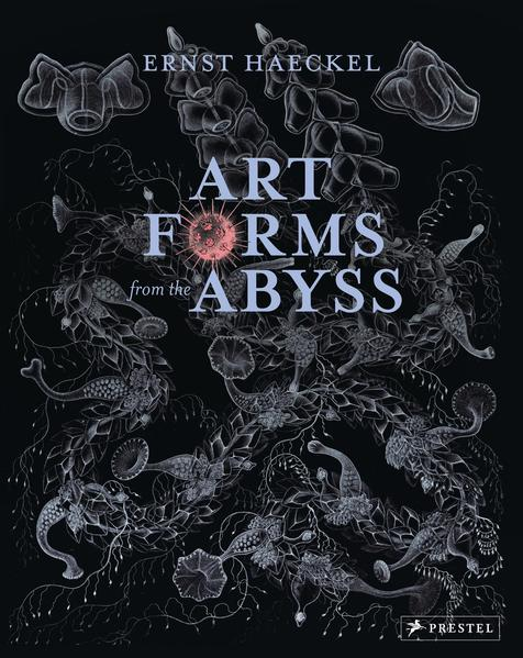 Art Forms from the Abyss - Coverbild