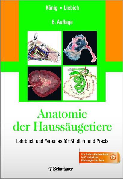 Anatomie der Haussäugetiere - Coverbild