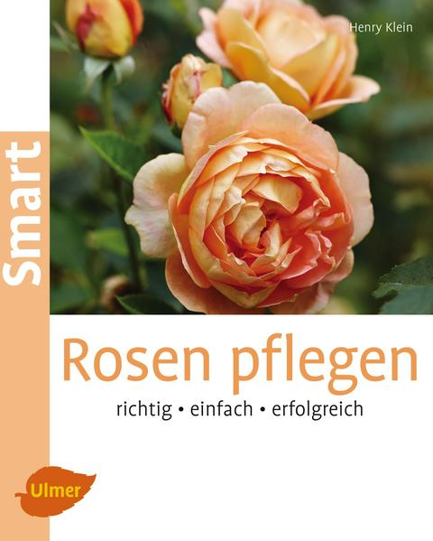 Rosen pflegen - Coverbild