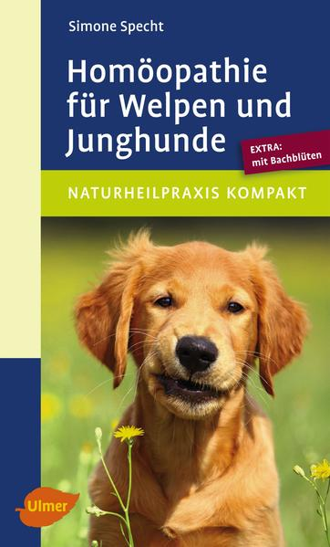 Homöopathie für Welpen und Junghunde - Coverbild