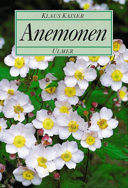 Anemonen - Coverbild