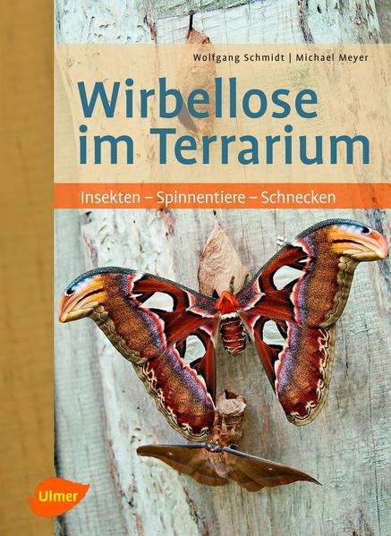 Wirbellose im Terrarium - Coverbild