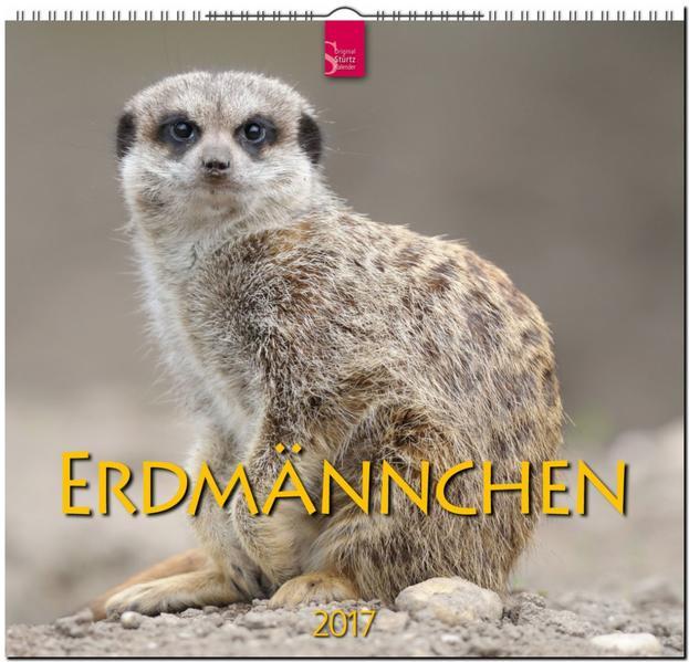 ERDMÄNNCHEN - Coverbild