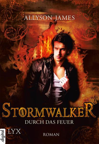 Stormwalker - Coverbild