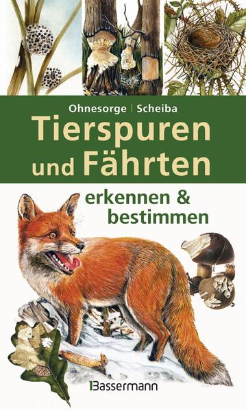 Tierspuren und Fährten erkennen & bestimmen - Coverbild