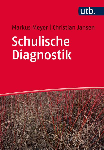 Schulische Diagnostik - Coverbild
