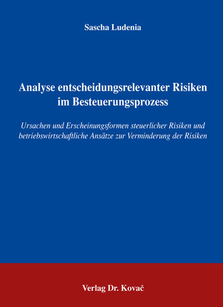 Analyse entscheidungsrelevanter Risiken im Besteuerungsprozess - Coverbild